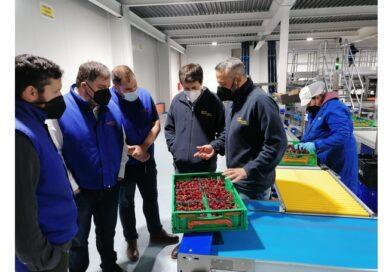 El equipo de Gobierno visita las instalaciones de la empresa Catafruit
